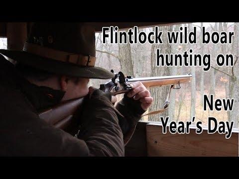 Hunting wild boar with flintlock rifle