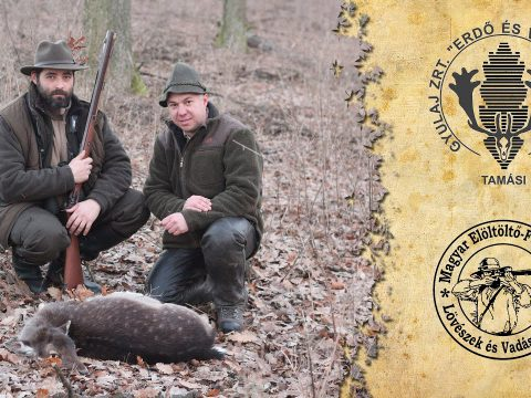 Muzzleloading hunt in Gyulaj using a Pedersoli Missouri River Hawken rifle