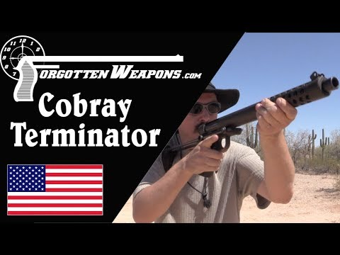 Cobray Terminator at the Range: The Worst Shotgun Ever