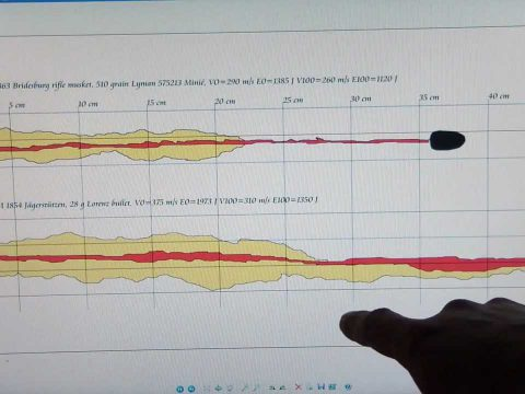 Lorenz bullet vs .58 Minié test in ballistic gelatine