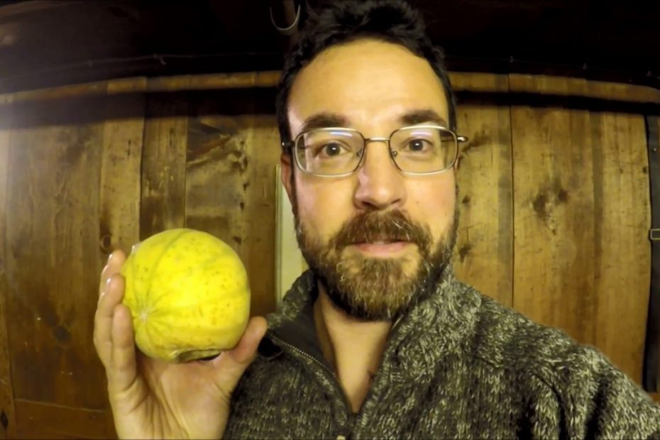 Fruit: BotR finally breaks down and does it…