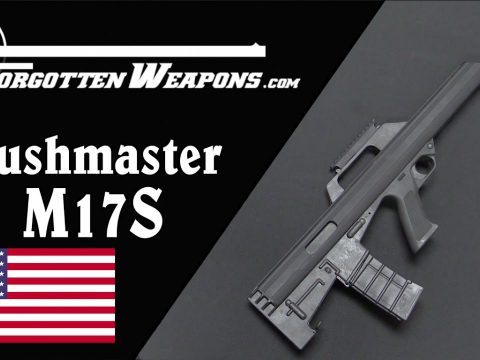 Bushmaster M17S – An American Commercial Bullpup