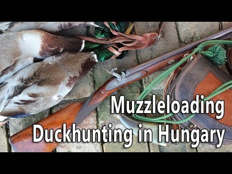 Muzzleloading duck hunting in Hungary