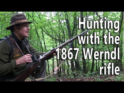 Hunting wild boar with the 1867 Werndl rifle