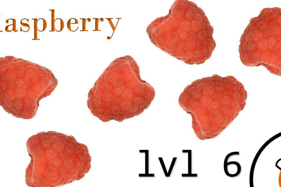 Small Arms of WWI Primer lvl 6: Raspberry