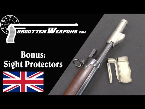 Bonus: Late Victorian Sight Protectors!