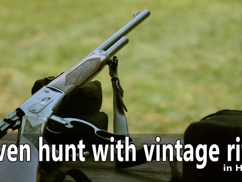Vintage rifle driven hunt in Hungary