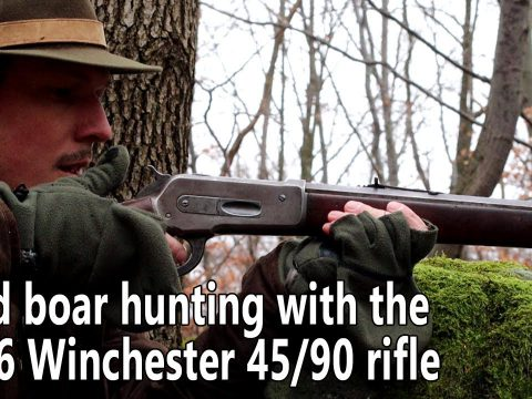 Wild boar hunting with the 1886 Winchester 45/90 rifle