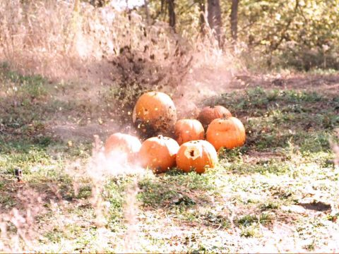 4-Bore Fun with Pumpkins