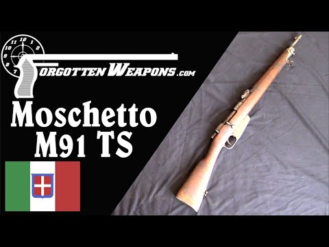 Special Troops M91 Carcano Carbine and the M91/24 Carbine