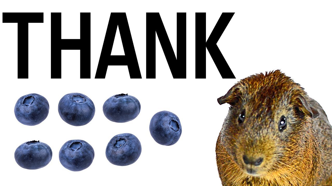 Thank: Septuple funded