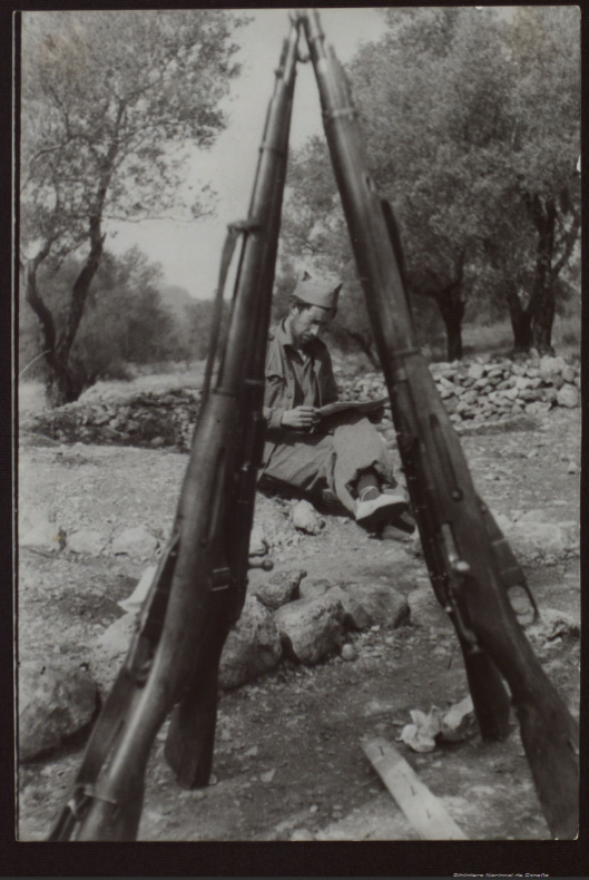 Stacked M91/30 rifles